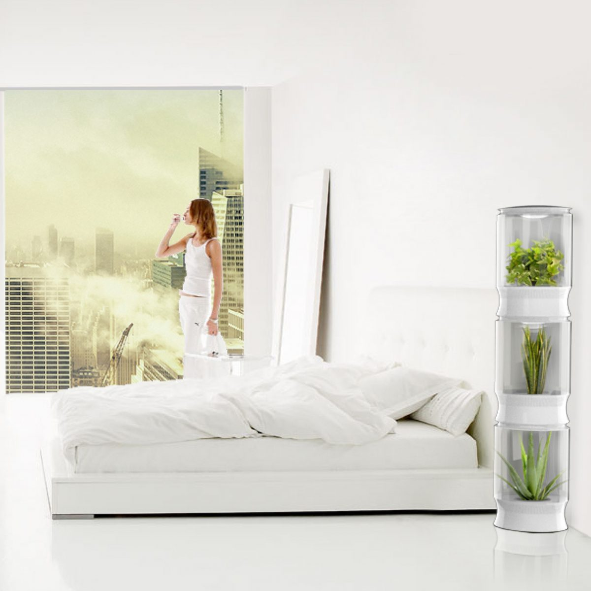 room clean white bianca